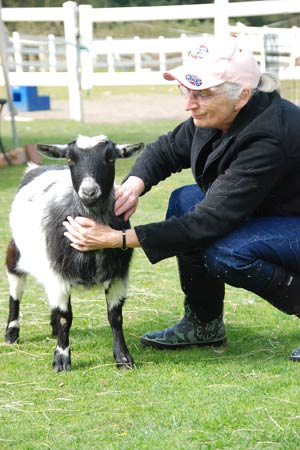 Animal Wellbeing Course: learn to know and love all animals